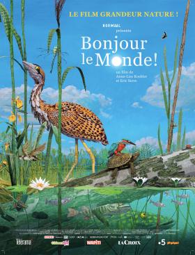 BONJOUR LE MONDE !