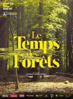 Le temps des forêts (Ciné-brunch Transition)