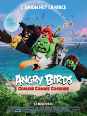 angry-birds-copains-comme-cochons